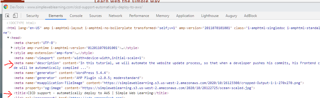 Tags added to HTML by plugin