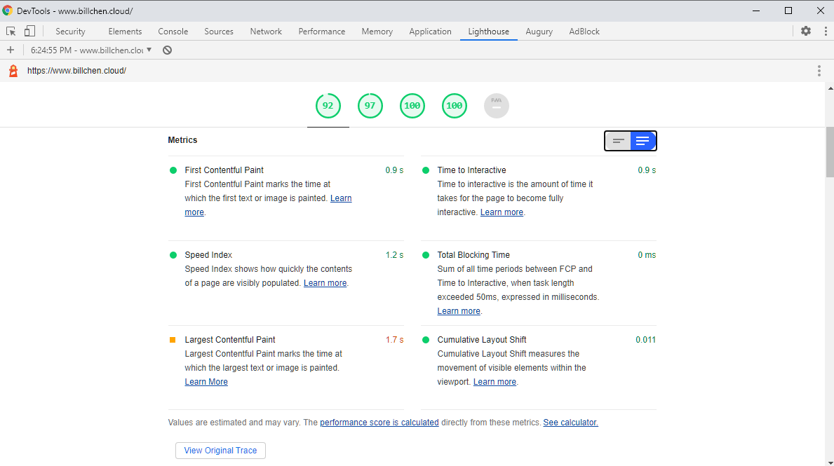 Google Lighthouse Report in detail