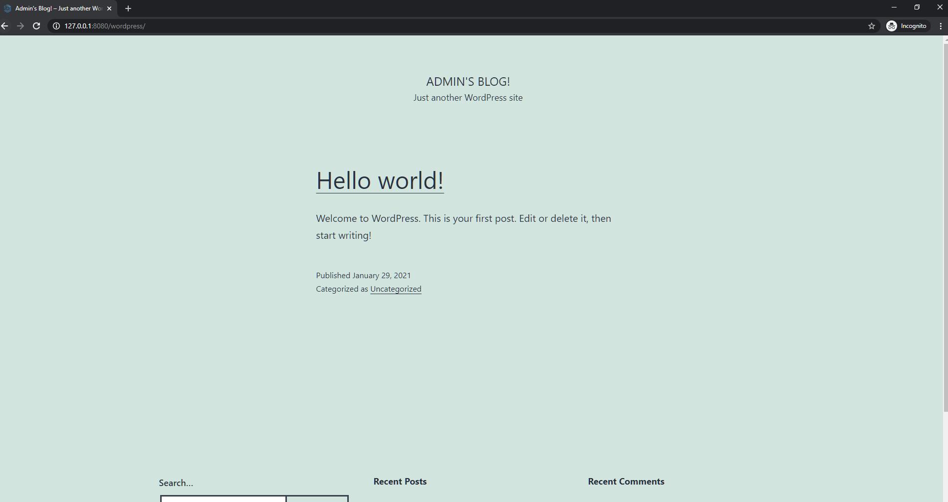 Default WordPress website